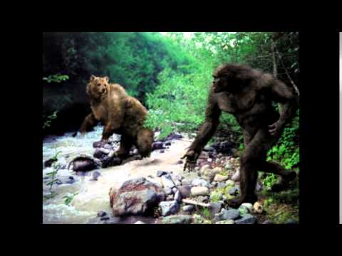 bigfoot vocalizations
