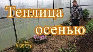 Теплица осенью.| Using greenhouse in autumn.