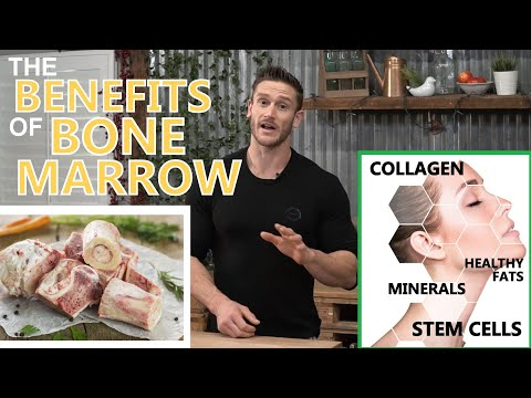 Why Eat Bone Marrow? Benefits Of Collagen, Minerals, Fat & Stem Cells In Marrow By Thomas DeLauer