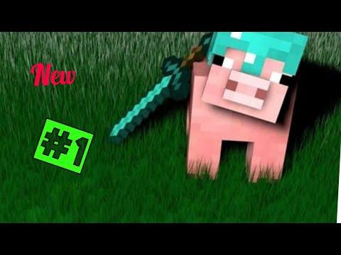 Un bel bioma - Minecraft PS4 ITA- Survival #1