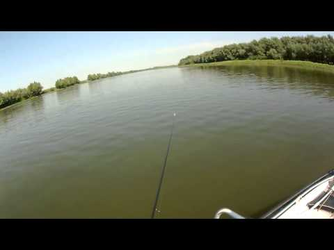 рыбалка на митинке видео в конце августа