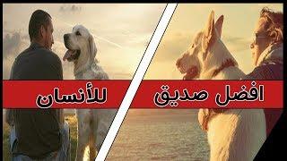 ما سر التقارب بين الكلب والانسان؟