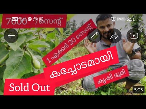 Agricultural Land for sale 7000 രൂപക്ക് കൃഷി ഭൂമി വില്പനക്ക്