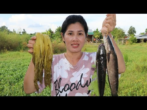Awesome Cooking Fish  W Pickled Green Mustard Recipe – Cook Fish Recipes – Village Food Factory