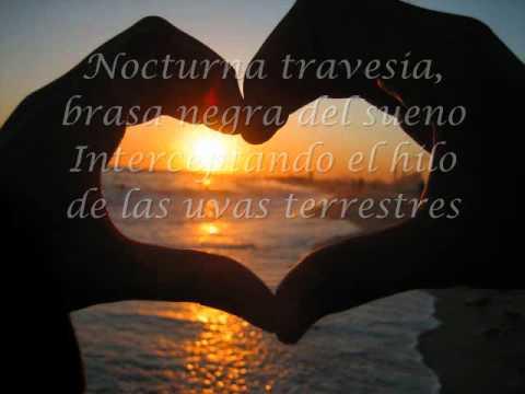 Love Poems For Him In Spanish 1