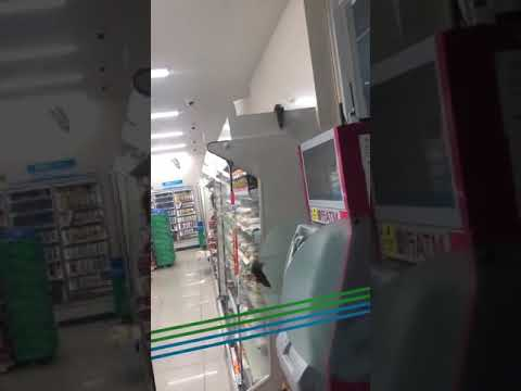 Rick Woodell - Rats invade a convenience store in Japan!