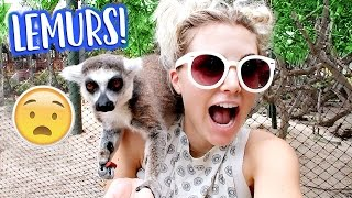PLAYING WITH LEMURS ON A PRIVATE ISLAND!