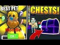 I GOT THE RAREST CHEST PETS IN ICE CREAM SIMULATOR UPDATE! *THIS IS OP* (Roblox)