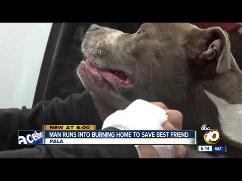 Randi West - Man runs into burning home to save dog