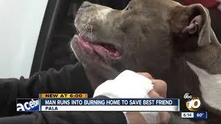 Man runs into burning home to save his dog