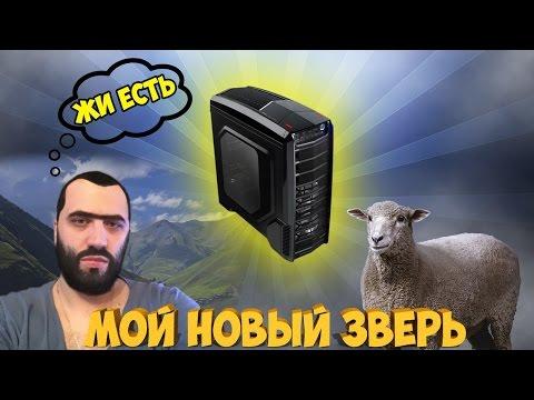 видео: МОЙ ЗВЕРЬ! 2000$! ДОСТОЙНО ВНИМАНИЯ!