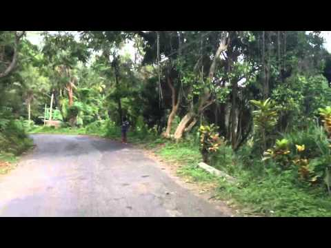 Crazy Jamaican Mountain driving up to Bob Marley's house