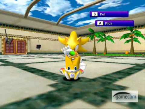 Sadx Supersonic Hack Chao Garden Youtube