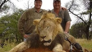 WALTER J. PALMER from River Bluff Dental - GAME HUNTER KILLS LION WITH GUN