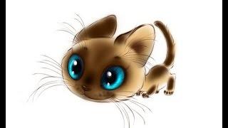Рисунки кошек  Как нарисовать кошку карандашом поэтапно для начинающих