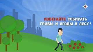 Правила поведения при радиации   Гражданская оборона на работе и в жизни