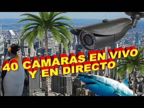 40 CAMARAS EN VIVO Y EN DIRECTO-LOS LINKS MAS INTERESANTES