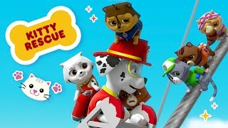 PAW Patrol Episode: Chase, Marshall & Skye Save the Kitty Rescue Crew  | Nick Jr.