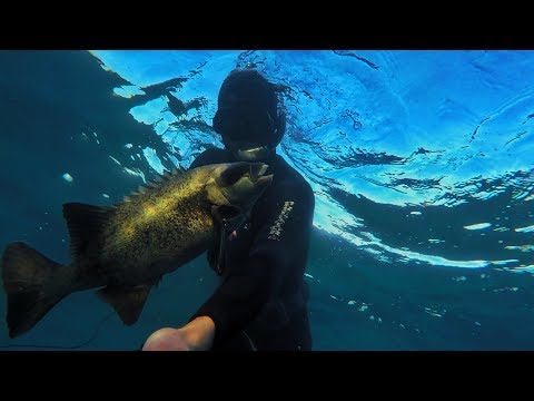 Spearfishing On A Kayak Compilation - Spearfishing East London South Africa