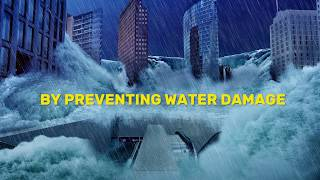 Don't Be A Dummy Prevent Water Damage - Dynamic Drain Marketing Sample