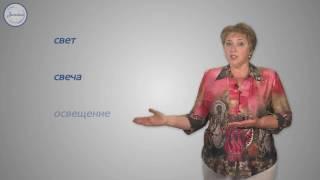 Уроки русского языка Понятие о чередовании согласных звуков в корне
