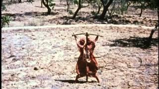 1994 Een Film voor Lucebert - Johan van der Keuken, music Willem Breuker