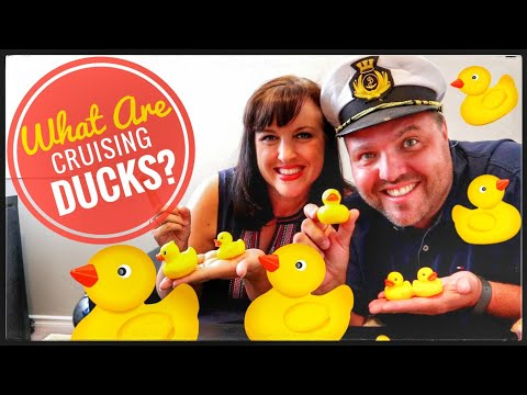 🐥What Are Cruising Ducks On Cruise Ships ?