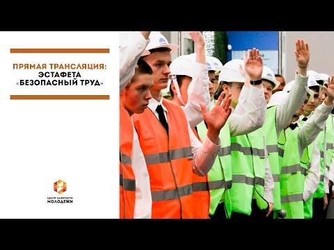 работа центр занятости дмитров