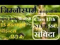 15 Most Important points of Gymnosperms (Plant Kingdom) in hindi