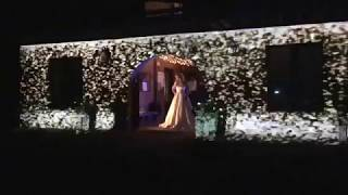 Falling Stars and Designer Bridal Gown