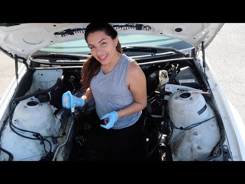 Cleaning My Engine Bay!