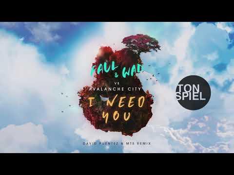 FAUL & WAD vs Avalanche City - I Need You (David Puentez & MTS Remix)