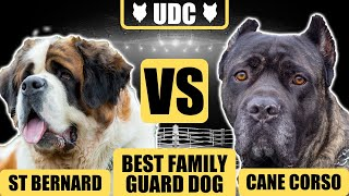 Cane Corso vs Saint Bernard! Which Is The Ultimate Family Guard Dog Breed!?!