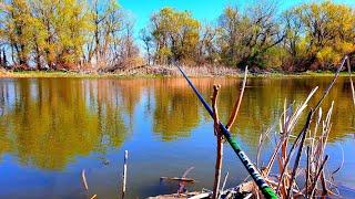 Рыбалка 2020 на поплавок разведка новых мест