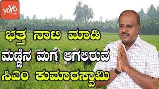 ಭತ್ತ ನಾಟಿ ಮಾಡಿ ಮಣ್ಣಿನ ಮಗ ಆಗಲಿರುವ ಸಿಎಂ ಕುಮಾರಸ್ವಾಮಿ | CM Kumaraswamy Karnataka | YOYO Kannada News