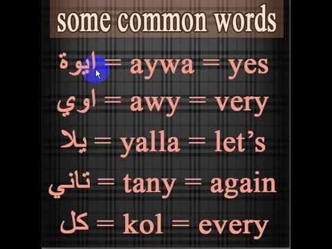 Common Egyptian Arabic Words