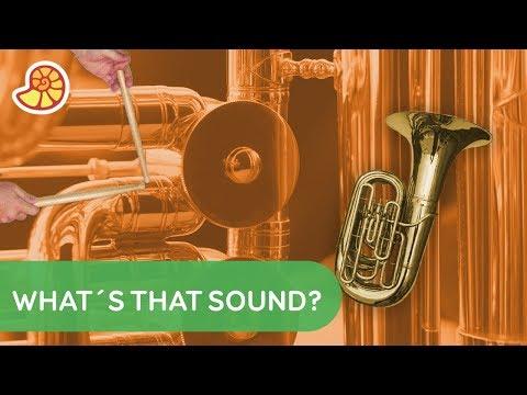The World's Weirdest Musical Instruments | Fun Da Mental Facts