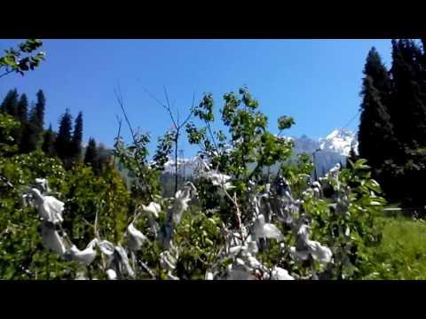 Almaty/mountains/Medeu/Shymbulak/Summer/river/Kazakhstan