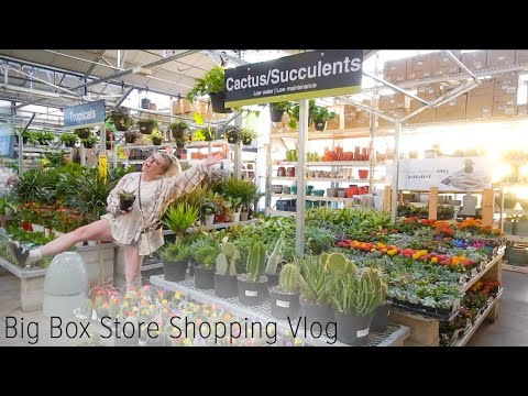 big-box-store-houseplant-shopping-vlog!-go-plant-shopping-at-home-depot-and-lowes!