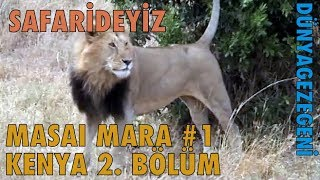 Kenya 2. Bölüm. Masai Mara #1 Afrika Safari Dünya Gezegeni DG Dünyagezegeni