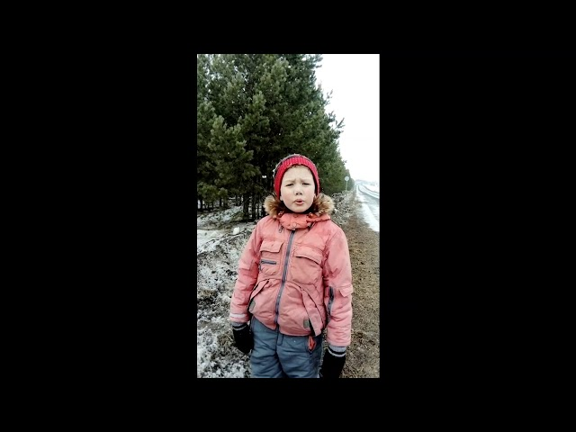 Изображение предпросмотра прочтения – ЮрийДрокин читает произведение «Весна (Зима не даром злится…)» Ф.И.Тютчева