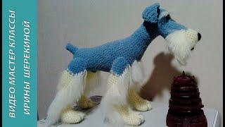 Как связать собаку Цвергшнауцер, ч.1.  Magnificent dog Miniature Schnauzer, р.1. Amigurumi. Crochet.