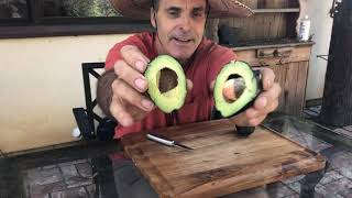 Taste Testing a New and Possibly Everbearing Avocado