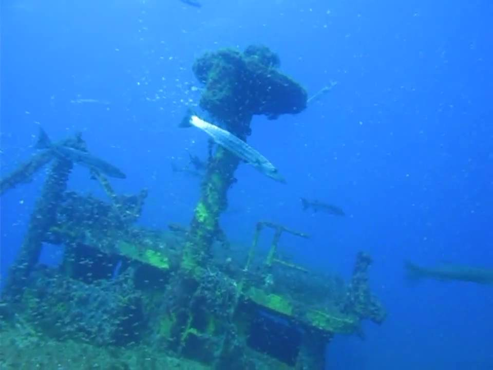 Scuba Diving Florida With Tanks-A-Lot Dive Charters