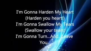 Shadows of the Night/Harden My Heart Lyrics