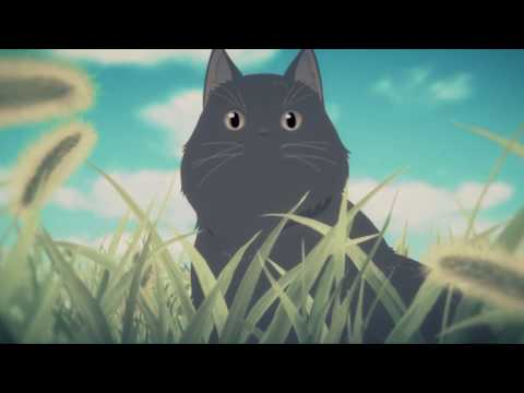 AMV -  She And Her Cat 1080p