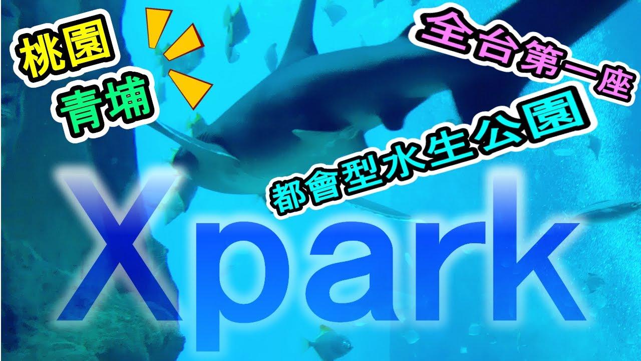 【萌探索】桃園景點新地標!IG熱門打卡好去處!來自日本的都會型水生公園 ☆「Xpark」登陸台灣