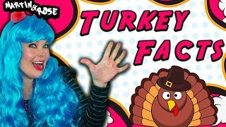 Turkey Tom Facts for Kids | Thanksgiving Lesson and Music for Preschoolers and Kindergartens gobble