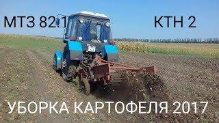 ДЕВУШКА за рулем трактора МТЗ 82 / УБОРКА КАРТОФЕЛЯ 2017 капаем с МТЗ 82.1 с капалкои КТН 2