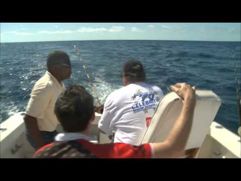 FISH TV BAHAMAS part 2